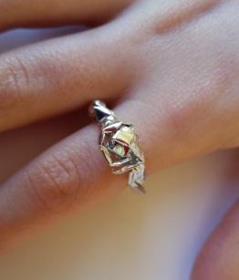 ring-pic-12
